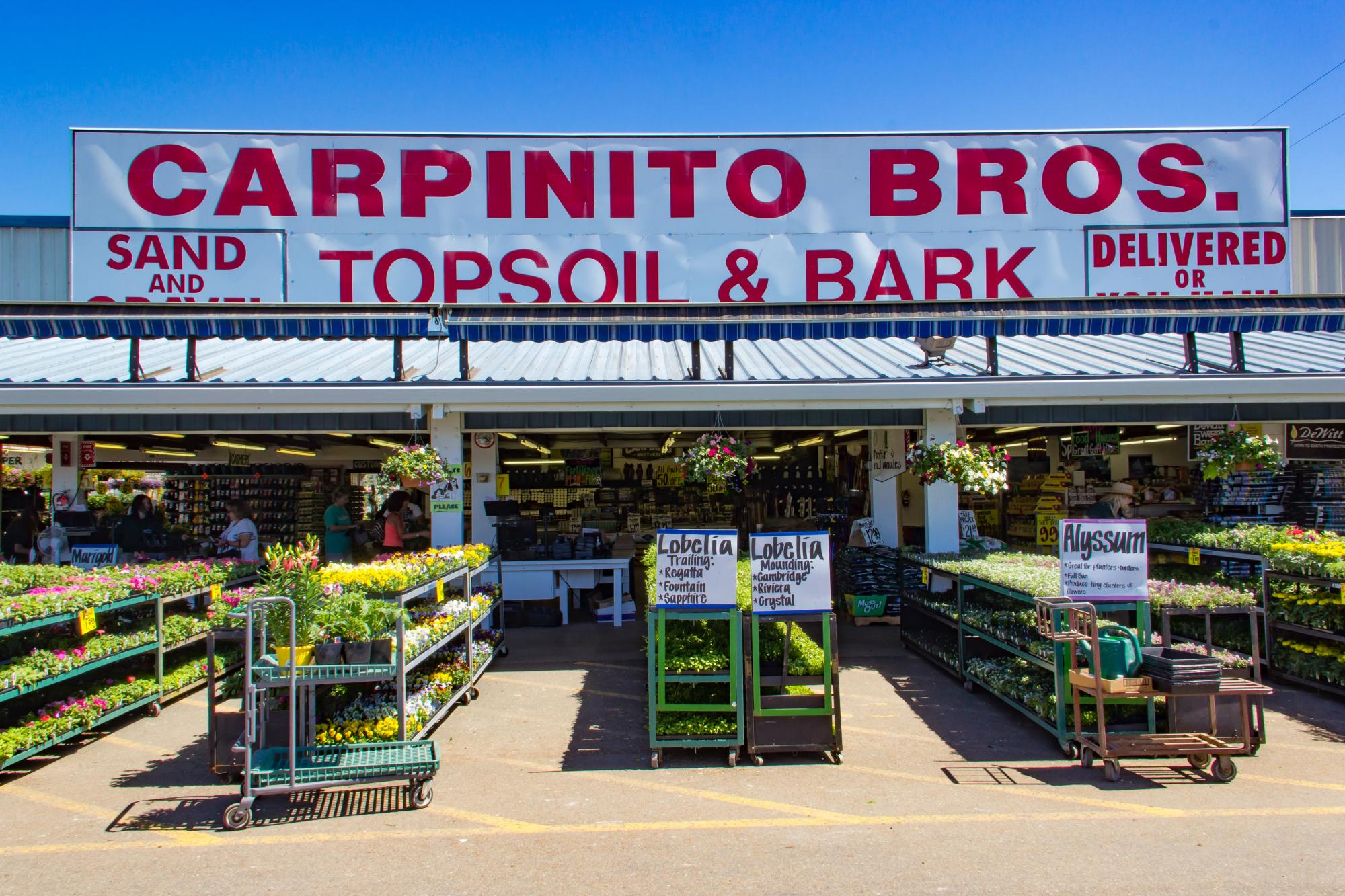 Carpinito Brothers Farm Kent Wa